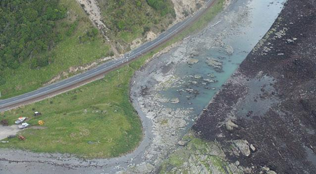kaikoura raised seabed