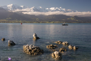 kaikoura-seaward-mountains-new-zealand-landscape-photography